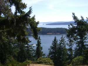 (6) Bluff Park. Though this is a 20-minute uphill walk from Driftwood, the workout and the lookout are worth it! The view over Active Pass, Trincomali Channel and the Southern Gulf Islands is that 'picture postcard' vista. Trails from here lead down towards the shore, and throughout the Park.